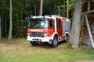 HLF10A_WieseUndWald_09